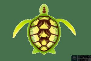robo turtle 4
