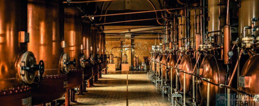 La distillerie Cointreau, une exploration multisensoriel